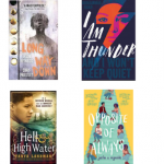 Wider Reading in KS3: Mirrors and Windows